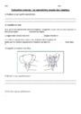 Evaluation La reproduction des végétaux et des animaux : CE2