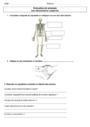 Evaluation Les mouvements corporels (muscles et squelette) : CM1