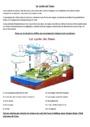 Exercice L'éducation à l'environnement : L'eau : CM1