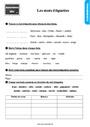 Exercice Mots étiquettes / termes génériques et particuliers : CE1