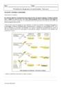 Exercice Perturbation du génome et cancérisation : Première