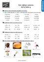 Exercice Phonologie : CM1
