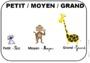 Leçon et exercice : Formes et grandeurs : MS - Moyenne Section