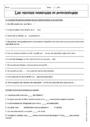 Cours et exercice : Reprises nominales et pronominales : 4ème