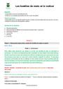 Séquence - Fiche de préparation Familles de mots : CM1