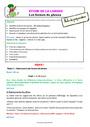 Séquence - Fiche de préparation Formes de phrases : CE2