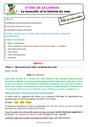 Séquence - Fiche de préparation Orthographe - Étude de la langue : CE1