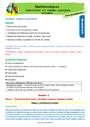 Séquence - Fiche de préparation Solides et patrons : CE1