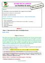 Séquence - Fiche de préparation Vocabulaire / Lexique - Étude de la langue : CE2
