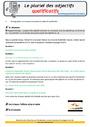 Révision, soutien scolaire - Accord de l'adjectif qualificatif : CM1