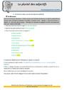 Révision, soutien scolaire - Accord de l'adjectif qualificatif : CM2