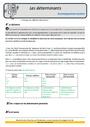 Révision, soutien scolaire - Article et déterminant : CM2
