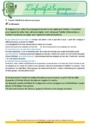 Révision, soutien scolaire - Infinitif : CM1