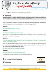 Le pluriel des adjectifs qualificatifs – Soutien scolaire – Aide aux devoirs : 4eme Primaire