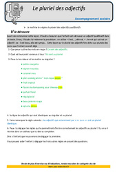 Pluriel des adjectifs – Soutien scolaire – Aide aux devoirs : 5eme Primaire