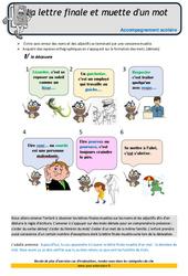 Lettre finale et muette d'un mot – Soutien scolaire – Aide aux devoirs : 4eme Primaire