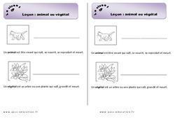 Animal ou végétal – Cours, Leçon : 1ere Primaire