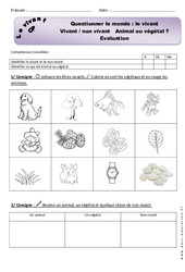 Le vivant – Examen Evaluation : 1ere Primaire