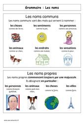 Les noms – Affiche pour la classe – Grammaire : 1ere Primaire