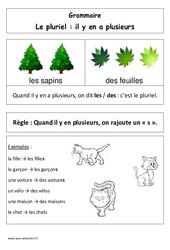Le pluriel – Affiche pour la classe – Grammaire : 1ere Primaire