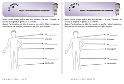 Mouvements corporels – Cours, Leçon
