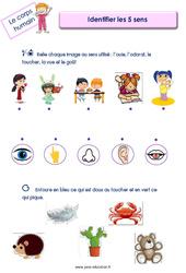 Identifier les 5 sens – Le corps humain : 2eme, 3eme Maternelle – Cycle Fondamental