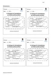 Je distingue les homophones- Fiches qu'elle(s) – quel(s) – quelle(s) – Entrainement – Examen Evaluation – Bilan avec correction : 5eme Primaire