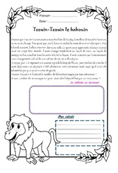 Tsouin – Tsouin le babouin – 1 histoire 1 problème : 4eme Primaire