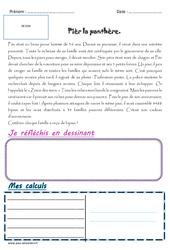 Pièr la panthère – 1 histoire 1 problème : 5eme Primaire