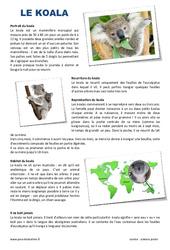 Koala – Lecture compréhension pour le  : 3eme Primaire