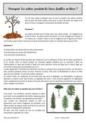 Pourquoi les arbres perdent – ils leurs feuilles – Lecture documentaire : 3eme Primaire