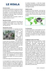 Koala – Lecture compréhension : 4eme, 5eme Primaire
