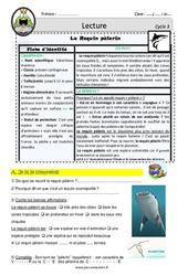 Le requin pèlerin – Lecture documentaire animalier – EDL : 4eme, 5eme Primaire