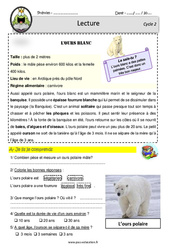 L'ours polaire – Documentaire – Lecture – EDL : 2eme, 3eme Primaire