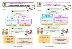 Le masculin et le féminin du nom – Étude de la langue – Cours, Leçon : 2eme Primaire
