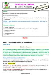 Le pluriel des noms – Étude de la langue – Fiche de préparation : 3eme Primaire