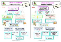 Le pluriel des noms – Étude de la langue – Cours, Leçon : 3eme Primaire