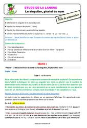 Le singulier, pluriel du nom – Étude de la langue – Fiche de préparation : 2eme Primaire