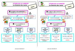 Le féminin des noms – Étude de la langue – Cours, Leçon : 3eme Primaire