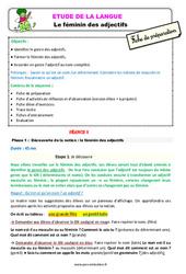 Le féminin des adjectifs – Étude de la langue – Fiche de préparation : 3eme Primaire
