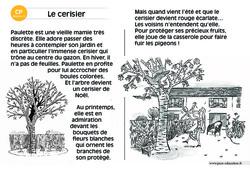 Le cerisier – Lecture compréhension – Histoire illustrée – Niveau 3 : 1ere Primaire