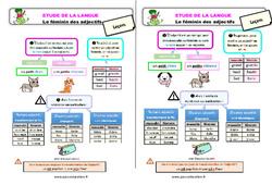 Le féminin des adjectifs – Étude de la langue – Cours, Leçon : 2eme Primaire