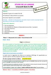 L'accord dans le GN au  – Étude de la langue – Fiche de préparation : 3eme Primaire