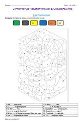 Homonymes – Coloriage magique : 3eme Primaire