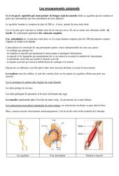 Mouvements corporels – Cours, Leçon – Sciences : 3eme, 4eme Primaire