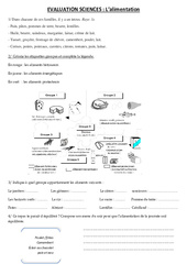 Alimentation – Examen Evaluation : 3eme, 4eme, 5eme Primaire