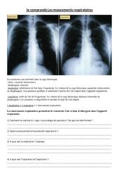 Je comprends Les mouvements respiratoires – Exercices – Sciences : 4eme, 5eme Primaire