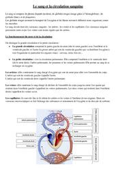 Le sang et la circulation sanguine – Cours, Leçon – Sciences : 5eme Primaire