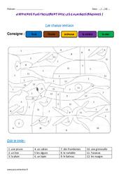 Champs lexicaux – Coloriage magique : 3eme Primaire