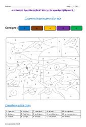 Lettre finale muette d'un mot – Coloriage magique : 4eme Primaire